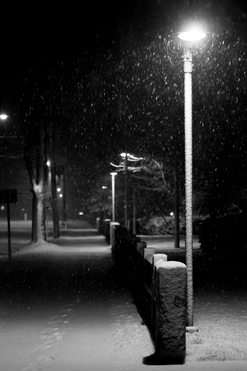 The Snowy Street Lamp